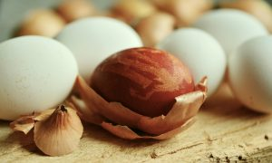 Recruiting Franchisees: How to Find a Good Egg - Franchise Resales