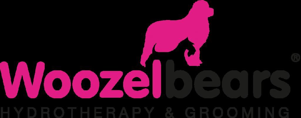 Woozelbears Case Study